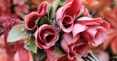 Jaké květiny dát na hrob, aby přežily zimu?