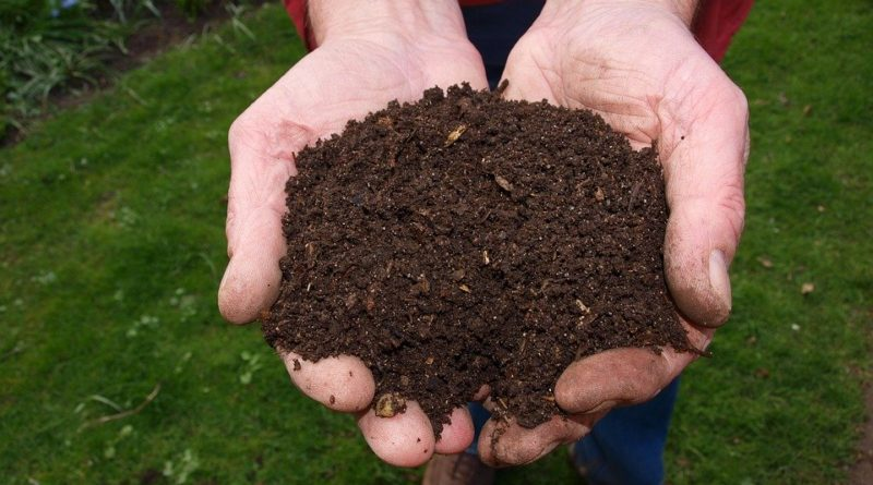 Pravidla úspěšného kompostování